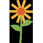 Nine Elms Park - flower